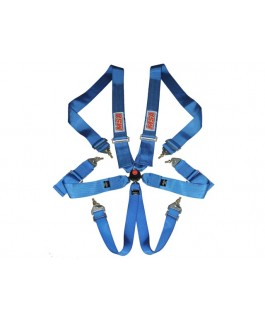 MSA Safety CAMS/ANDRA Racing Harness FIA Approved (Blue)