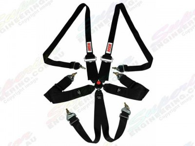 MSA Safety CAMS/ANDRA Racing Harness suit HANS FIA Approved(Black)